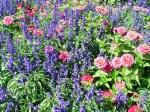 Butchart Gardens—Victoria 011