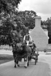 Colonial Williamsburg88