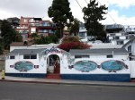 Colorful Catalina Cottages