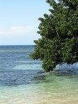 Fleming Lagoon