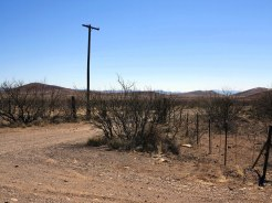Telegraph Pole and Ranch Fencing
