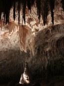 Carlsbad Caverns 26