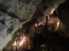 Carlsbad Caverns 32