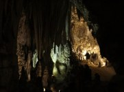 Carlsbad Caverns 49