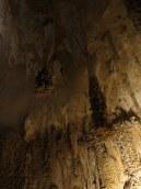 Carlsbad Caverns 57