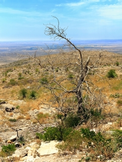 Carlsbad Caverns Overlook
