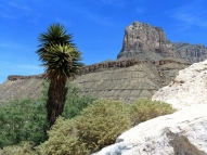 Guadalupe Mountains 7