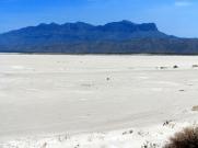 Salt Flat 4