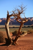 Monument Valley103