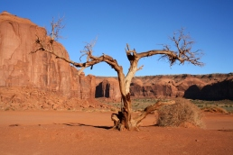 Monument Valley104