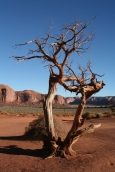 Monument Valley105