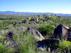 Field of Boulders