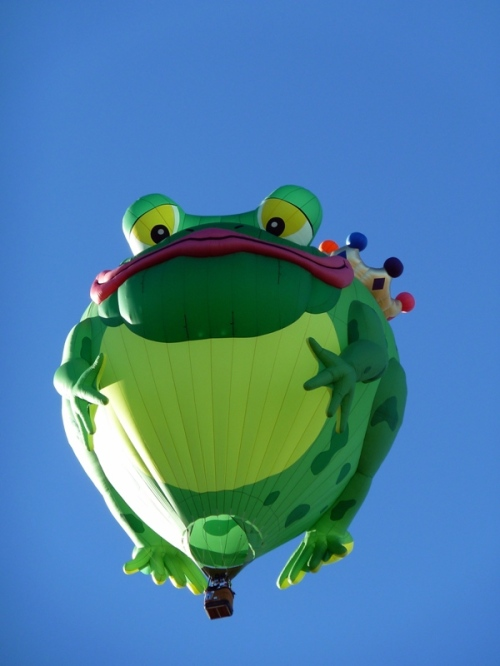Feelin' Froggy?