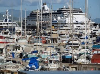 Boats, Yachts, Masts, and the Ryndam