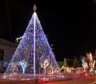 El Paso Christmas Tree