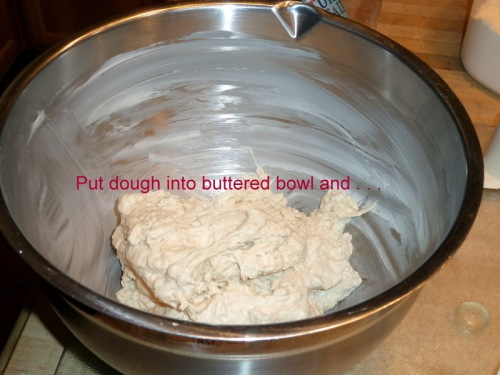 Place dough into buttered bowl