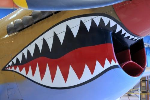 P-40 Warhawk in Flying Tiger war paint