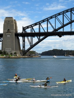 Kayaking the Harbour