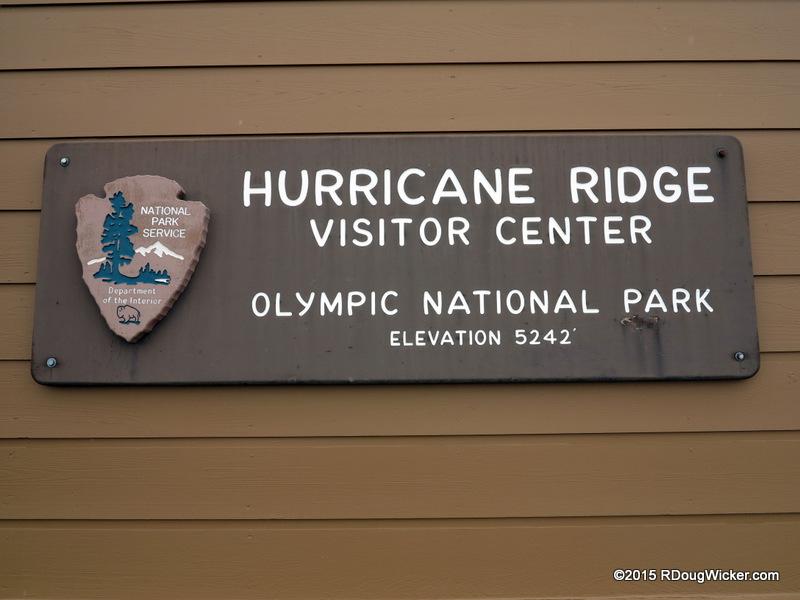 Hurricane Ridge-016