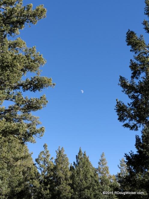 Lunar View