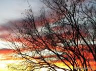 December 21 Sunset