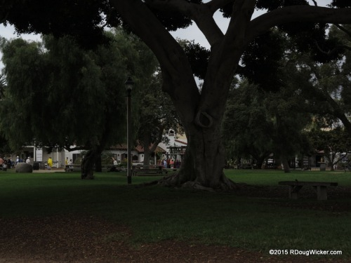 The park in San Diego Old Town