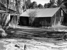 Jed Clampett's Old Place