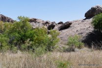 Hueco Tanks State Park & Historic Site