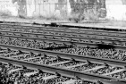 Rails in Black & White