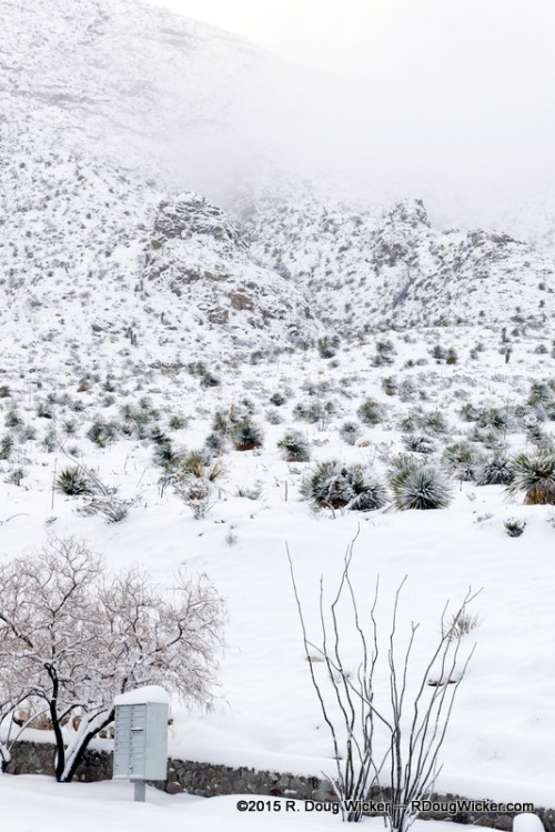 Franklin Mountains in Snow