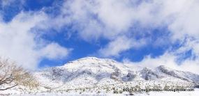 El Paso Alps