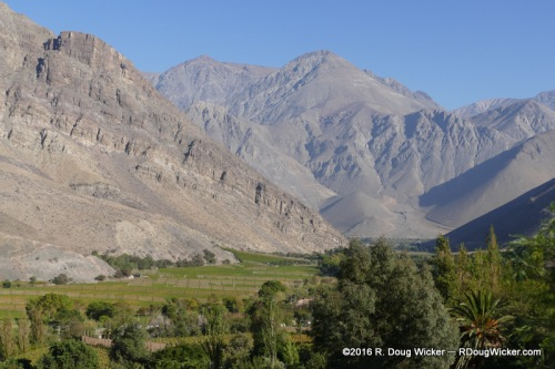 The fertile Elqui Valley