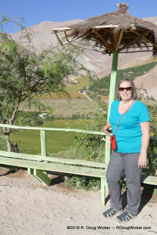 Ursula at the Elqui Valley lookout