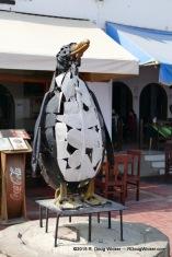 Paracas Penguin