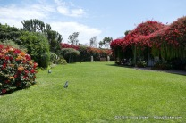 Museo Larco Grounds