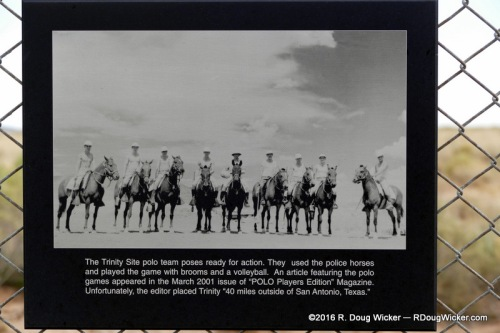 The Trinity Site Polo Team using police horses, broomsticks, and a volley ball