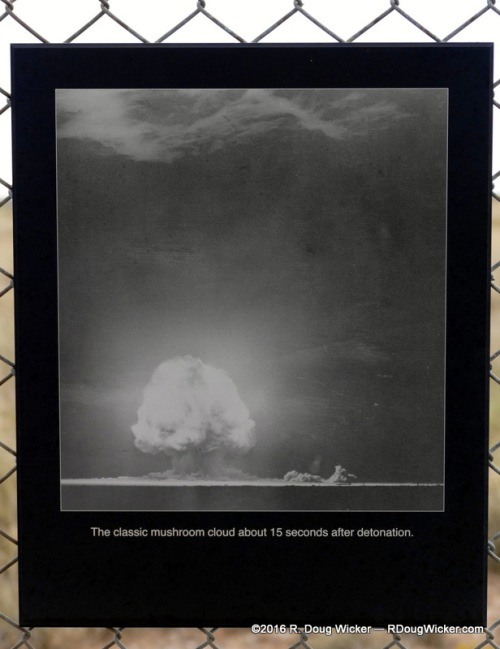Characteristic mushroom cloud forming 15 seconds after detonation