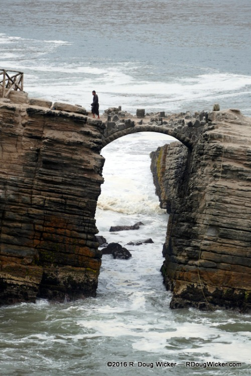 A Dripping Wet Monk Walks Back