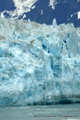 Wall of Ice up to 350 feet above the water!