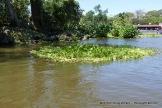 Lake Nicaragua 3-25-2015 11-19-35 AM