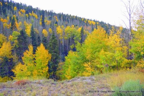 Enchanted Circle Fall Foliage