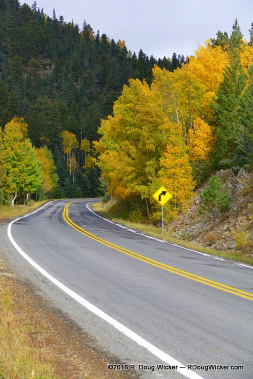 Even the curve warning sign was in fall color