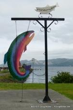 Coho Salmon (I think)