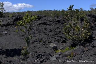 Lua Manu Crater