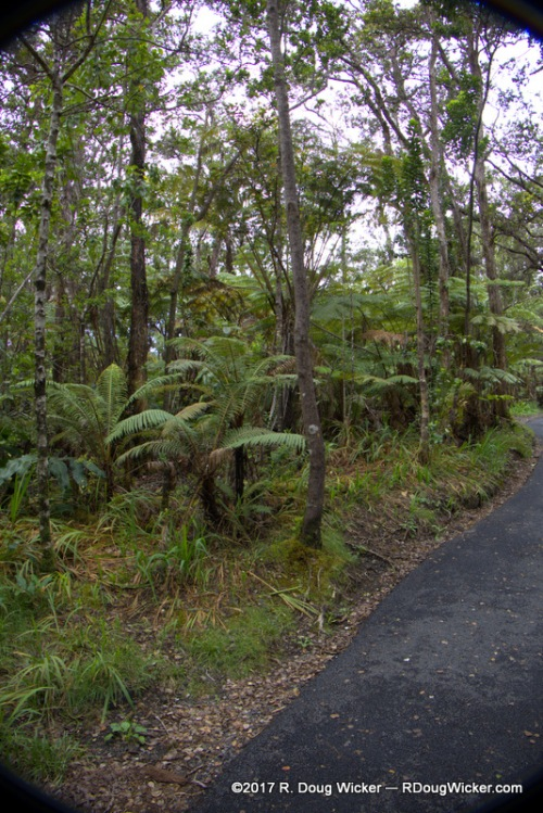 The hike to Nāhuku