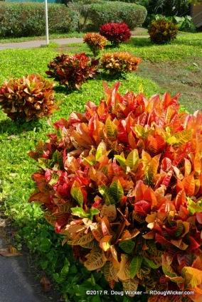 Nawiliwili, Kauai