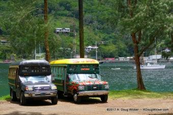 Aiga Buses