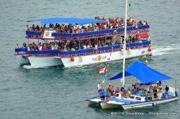 Sea Crowds