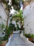 Personal Garden Space