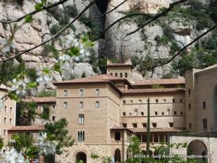 Montserrat Amidst Blurred Flowers